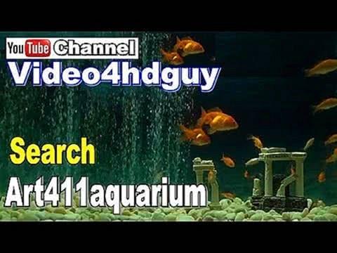 Goldfish Aquarium Screensaver Fish Tank peaceful relaxing