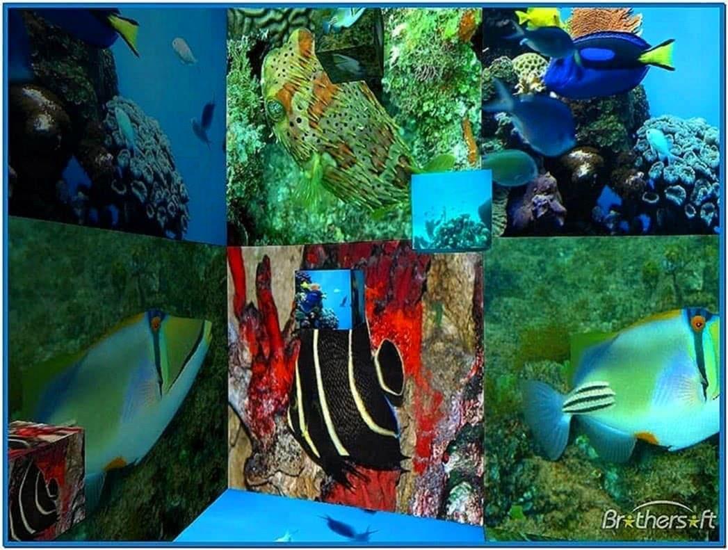 3D Desktop Aquarium Screensaver 1.0
