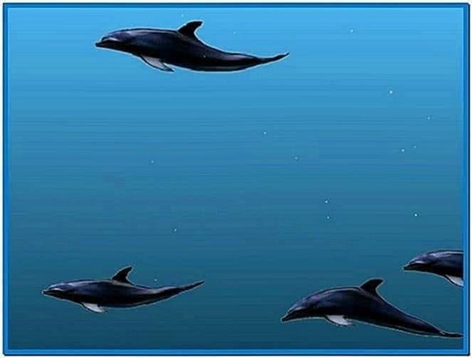 3D Dolphin Screensaver Windows 7