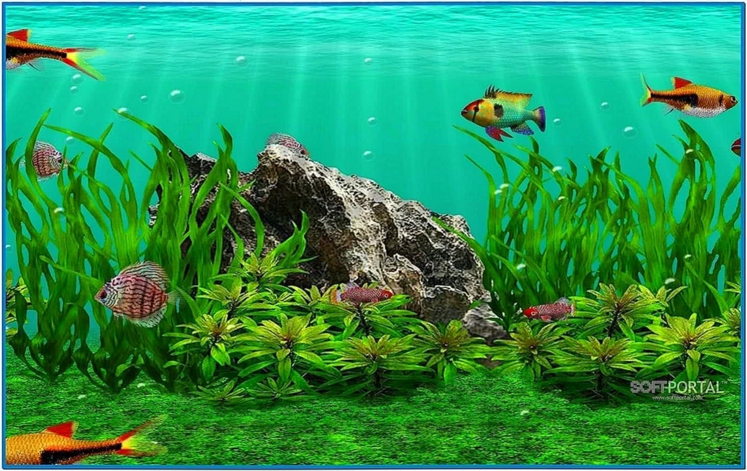 3d fish school 4 screensaver  Download free