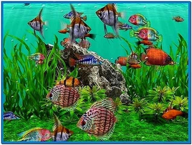 3D Fish School Screensaver 3.81