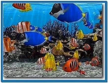3D Fish School Screensaver 3.92