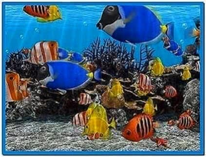 3D Fish School Screensaver 3.94