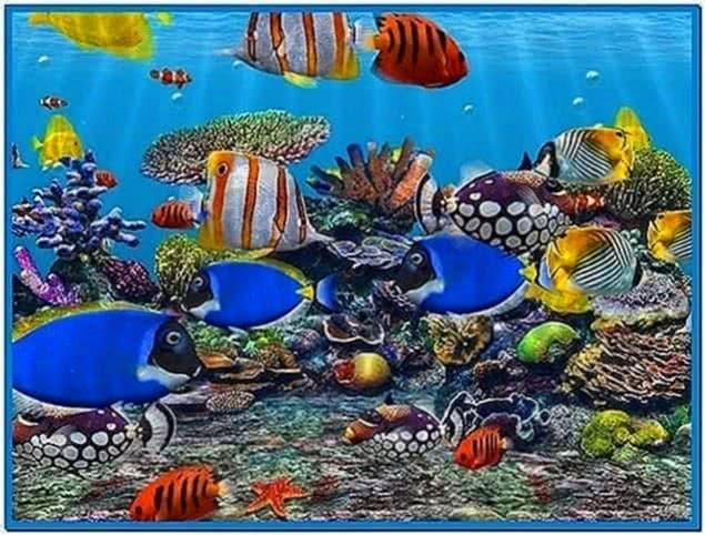 3D Fish School Screensaver 4.7