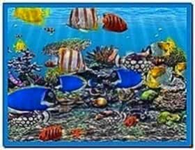 3D Fish School Screensaver 4.91