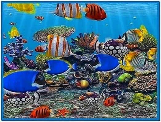 3d fish school screensaver 4.93