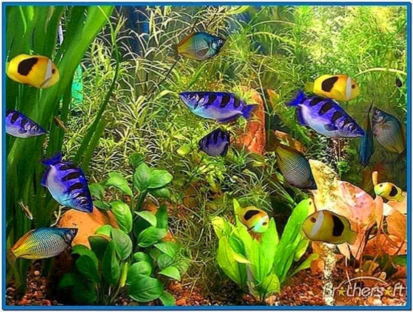 3D Fish School Screensaver Mac