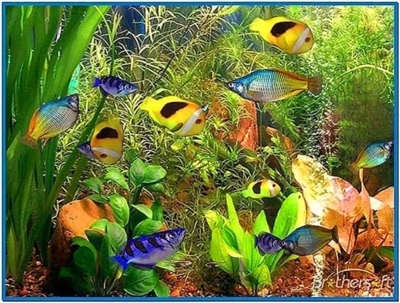 3D Fish School Screensaver Mac
