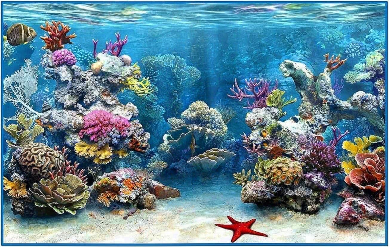 3d living aquarium screensaver download free for Live fish aquarium