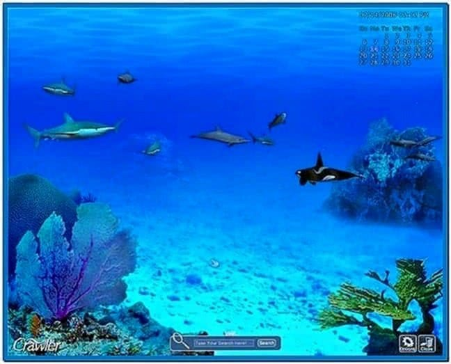 3D Marine Aquarium Screensaver 1.198