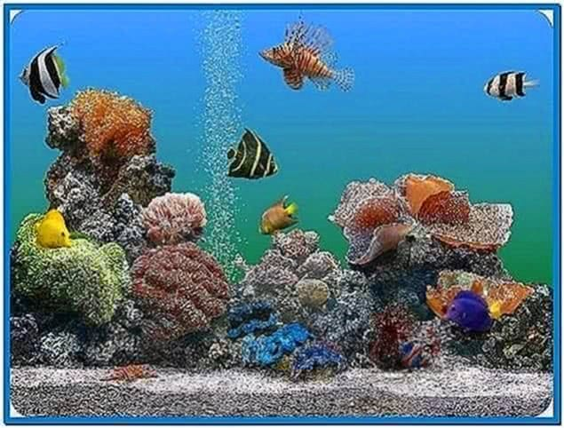 3D Marine Aquarium Screensaver Mac