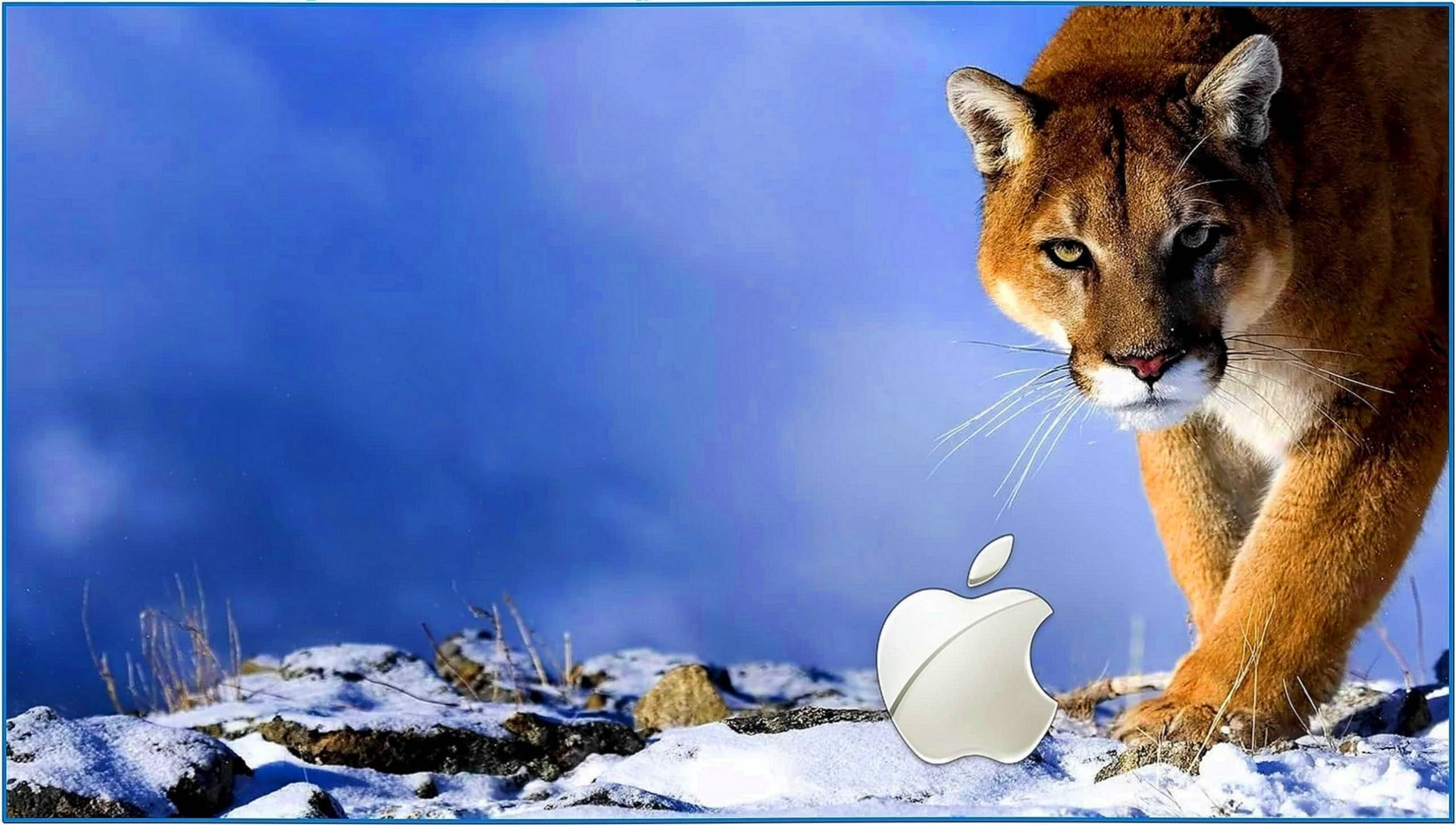 3D Screensavers Mac Snow Leopard