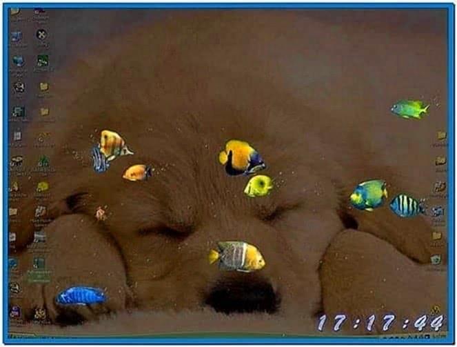 3d swimming fish screensaver