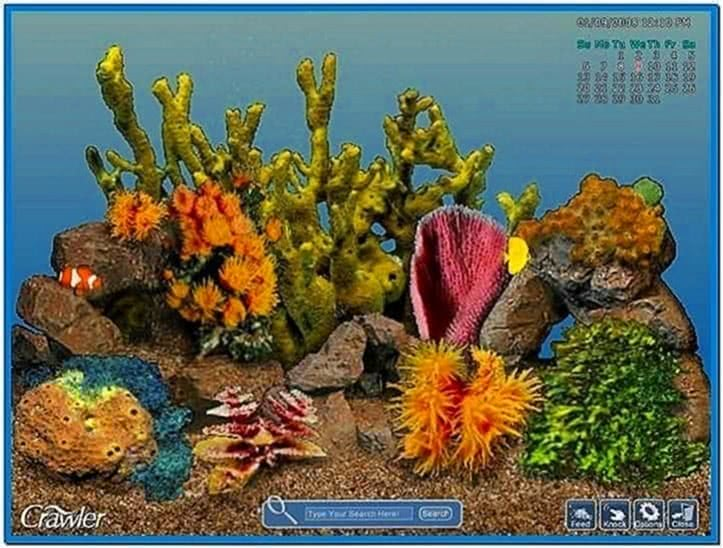3D Tropical Aquarium Screensaver 1.198