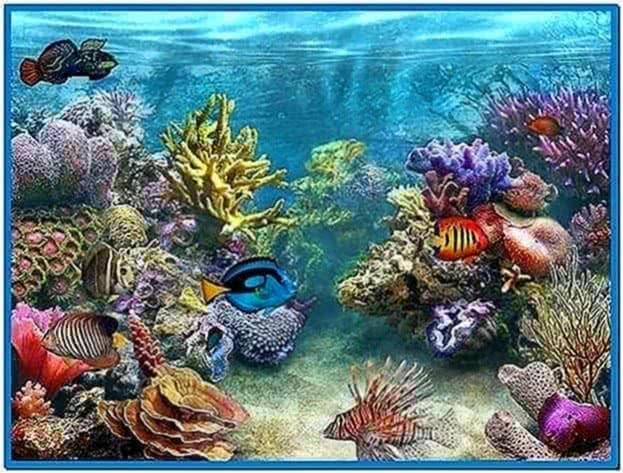 3D Tropical Fish Aquarium II Screensaver