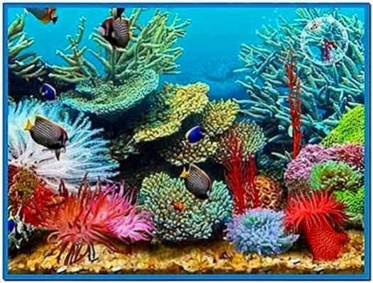 3D Tropical Fish Aquarium Iii Screensaver
