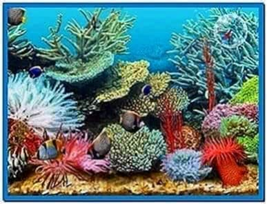 3D Tropical Fish Aquarium Screensaver