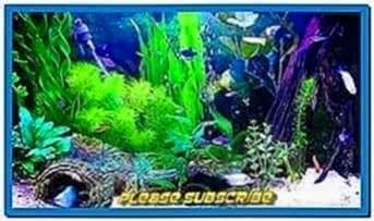 Amazing HD Aquarium Screensaver Windows