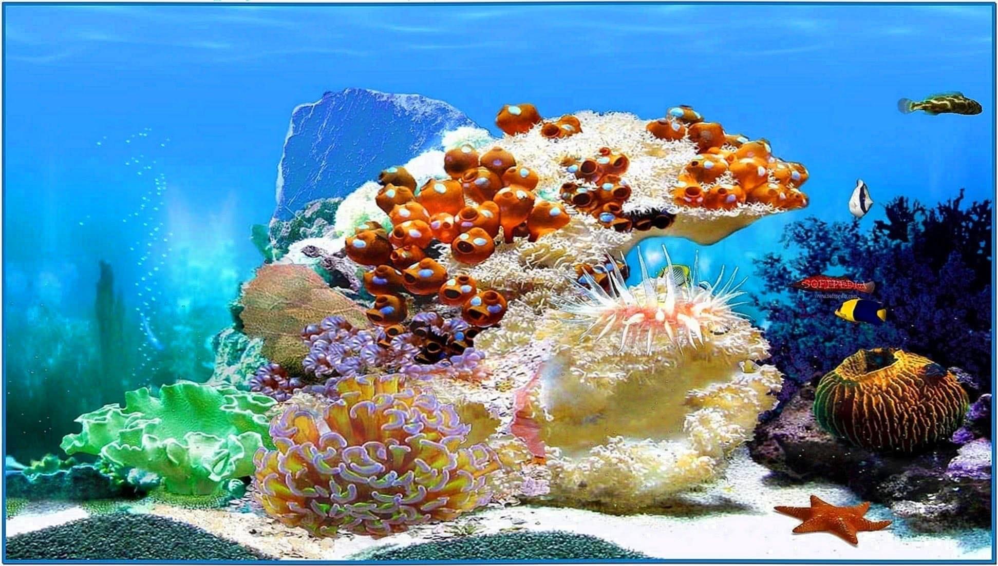 Animated 3D Aquarium Screensaver