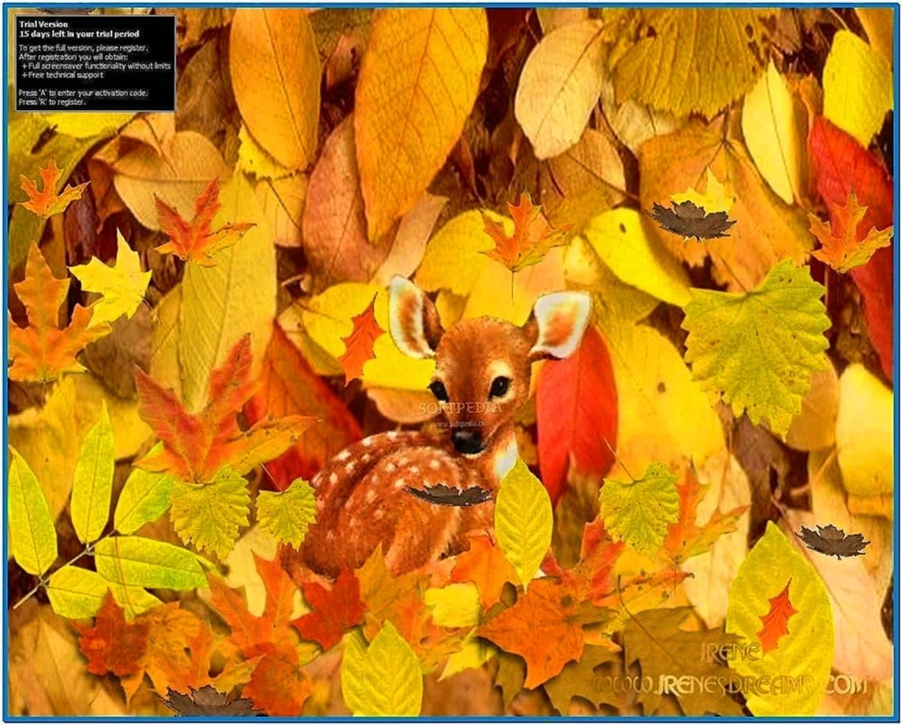 Animated Deer Screensaver
