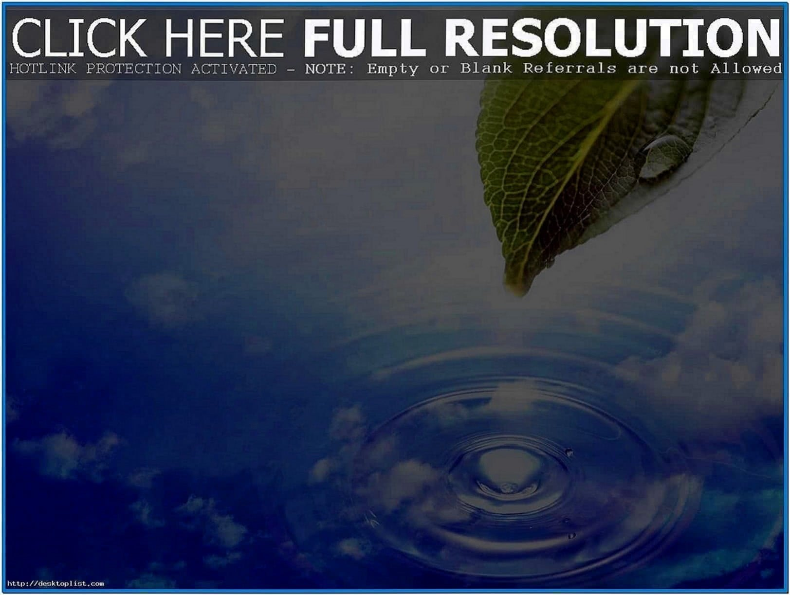 Animated Nature Screensavers for PC