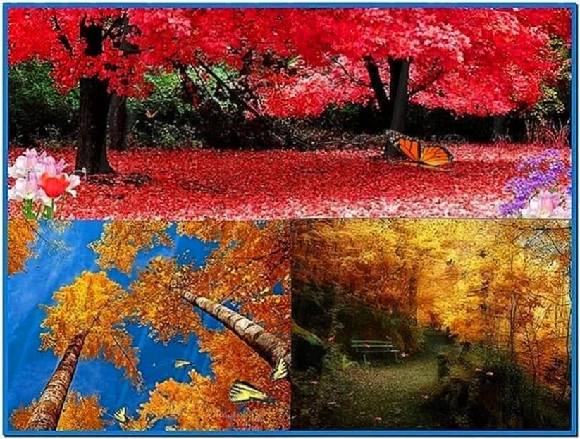 Animated nature screensavers Windows 7