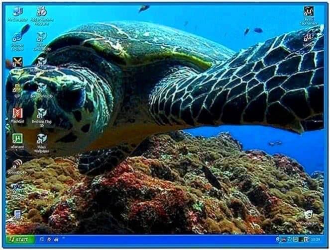 Animated Screensavers Windows Vista