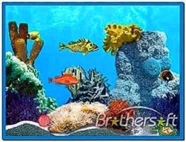 Animated tropical fish screensaver