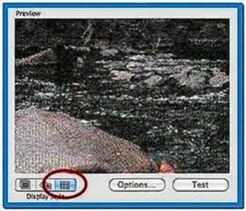 Apple 10.5 Mosaic Screensaver