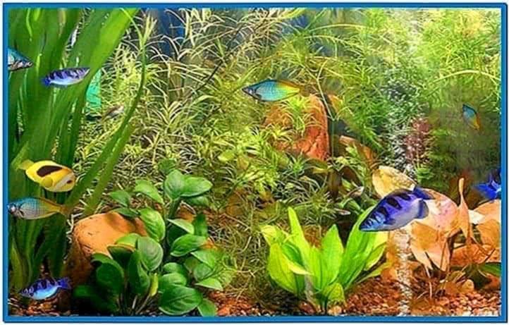 Aqua 3D Screensaver Windows 8