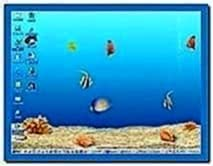 Aqua Real 3D Aquarium Screensaver