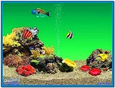 Aquareal 3D Aquarium Screensaver