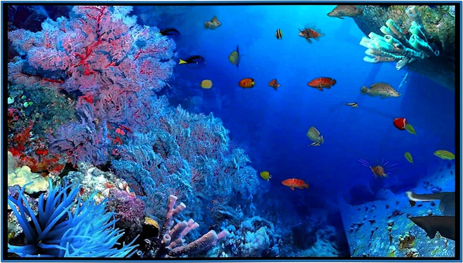 Aquareal 3D Sea Aquarium Screensaver