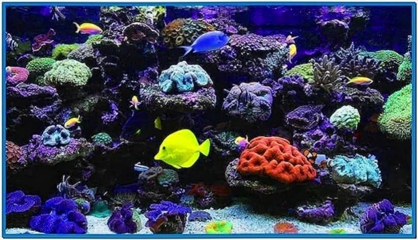 Aquarium hd video screensaver
