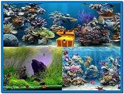 Aquarium Screensaver 2020