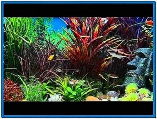 Aquarium Screensaver for Lcd TV