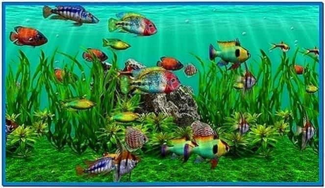 Aquarium Screensaver Plasma TV