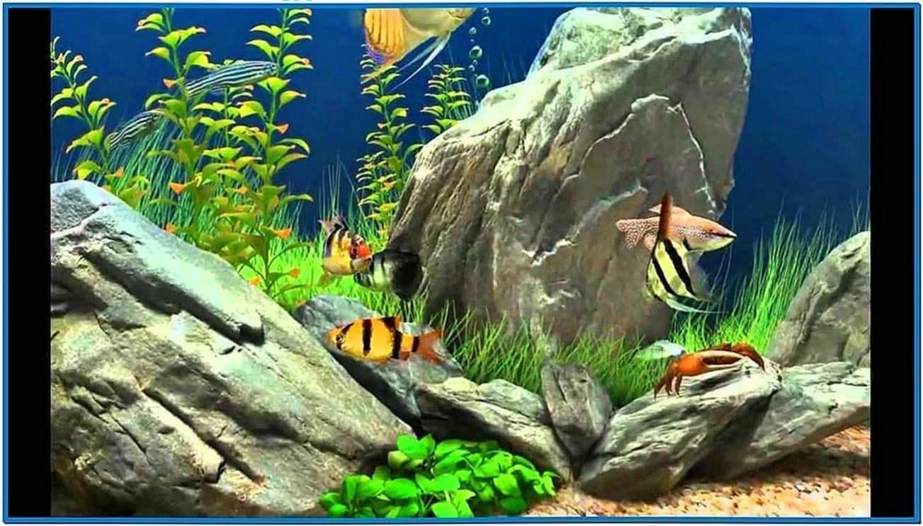 dream aquarium 1.27 serial number