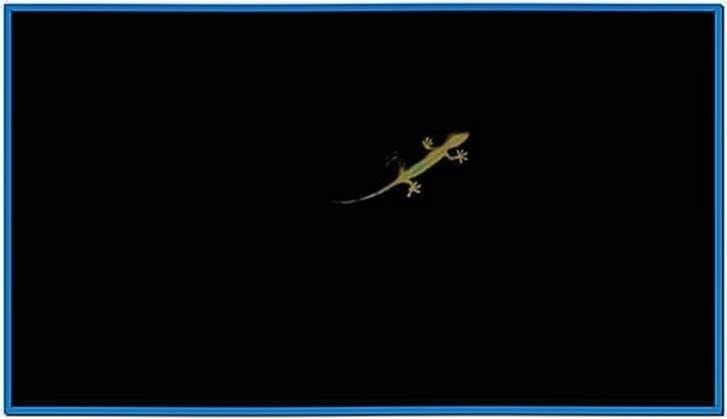 Audi Quattro Gecko Screensaver