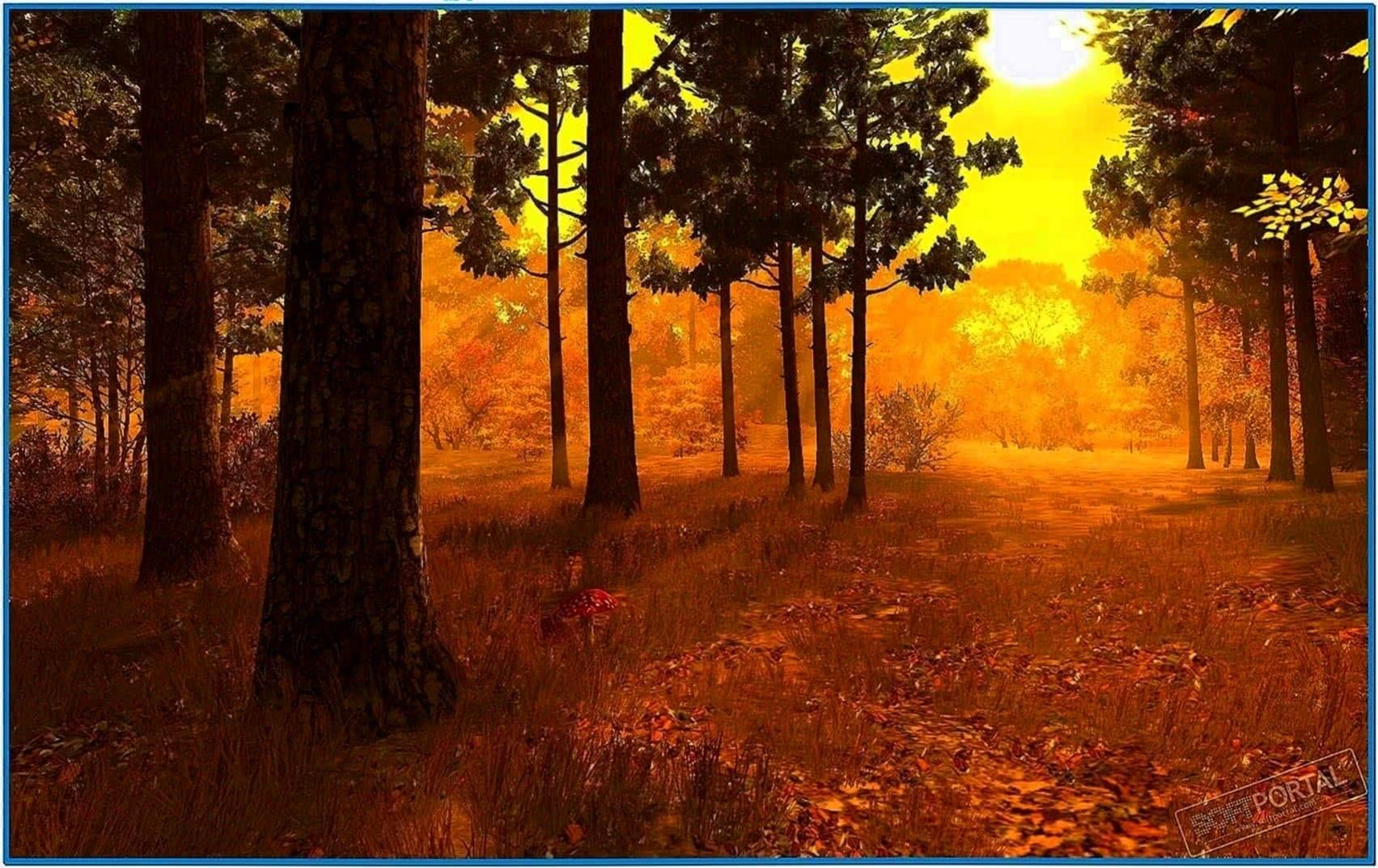 Autumn Forest 3D Screensaver