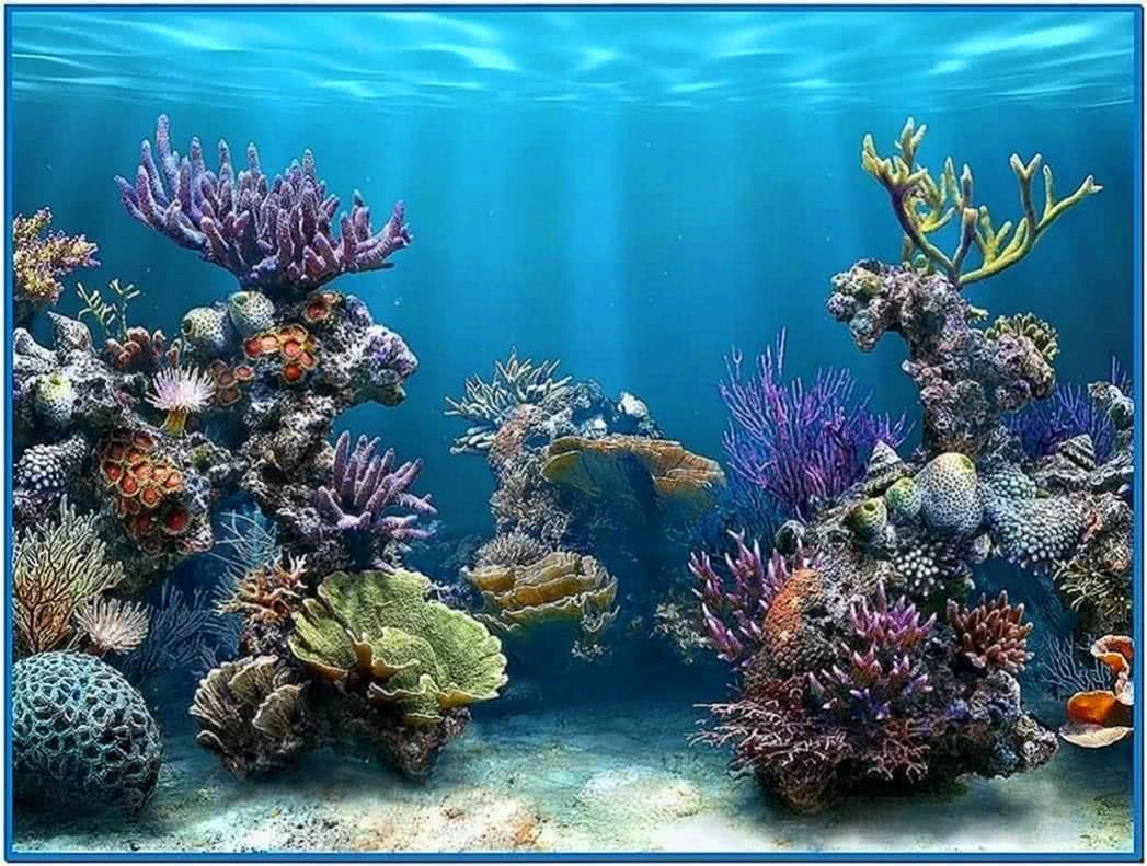 best live aquarium screensaver