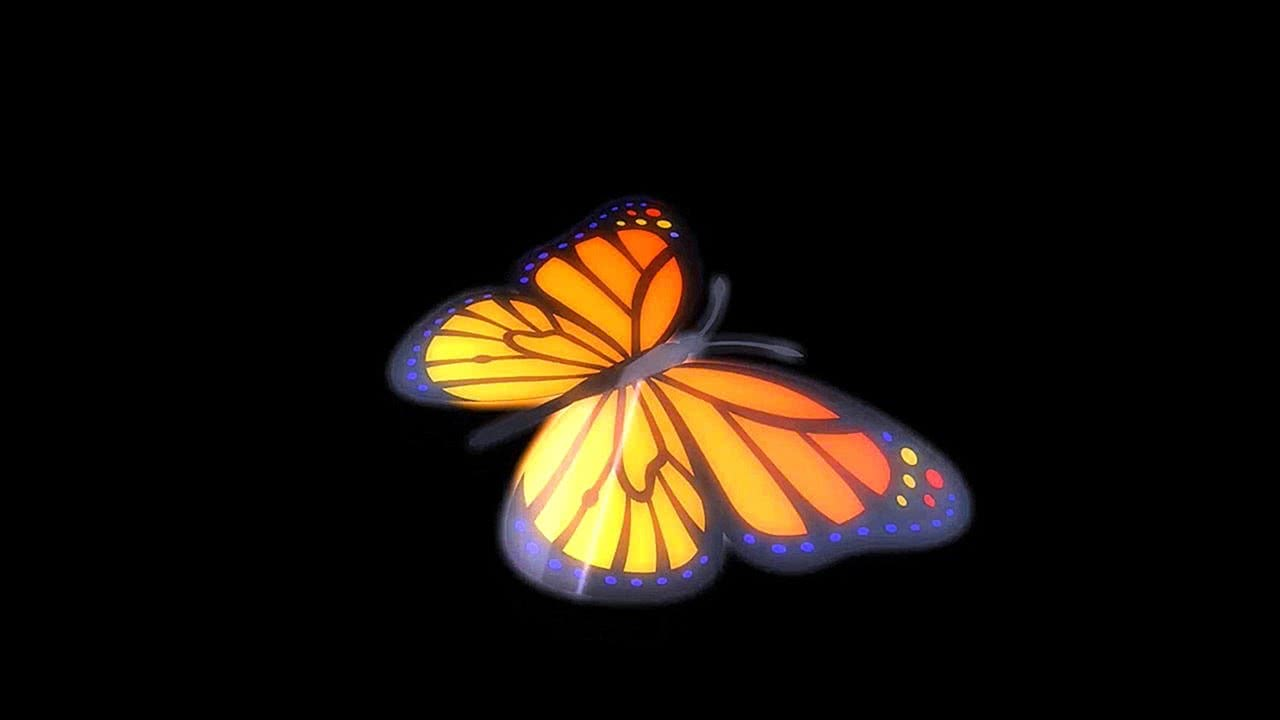 Butterfly Flying Endlessly 4K Relaxing Screensaver