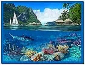 Caribbean Islands 3D Screensaver and Animated Wallpaper 1.1