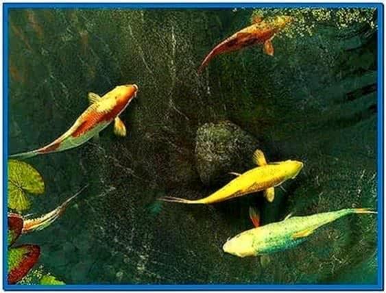Code Koi Fish 3D Screensaver 2.0