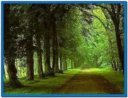 Computer Nature Screensaver