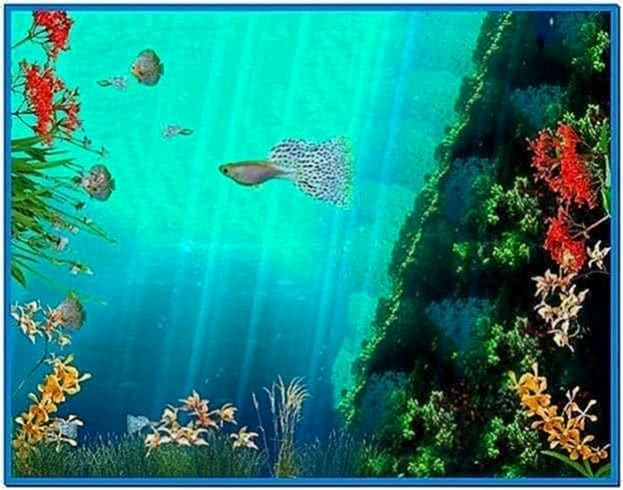 Coral Reef Aquarium 3D Screensaver 1.0