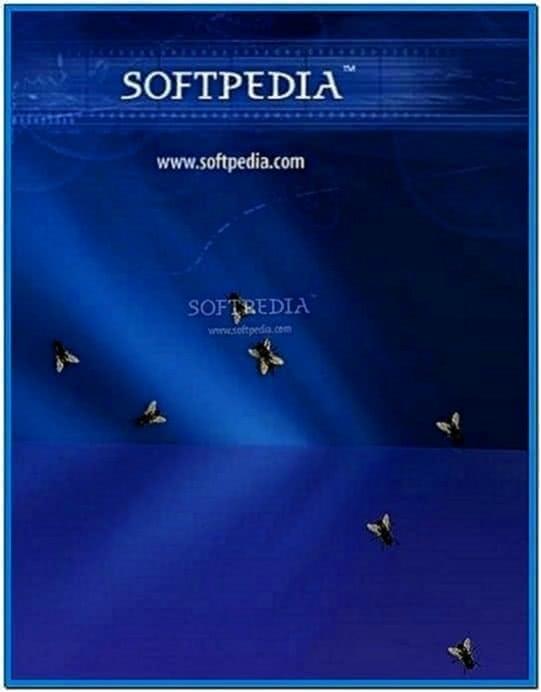 Desktop Screensaver Fly