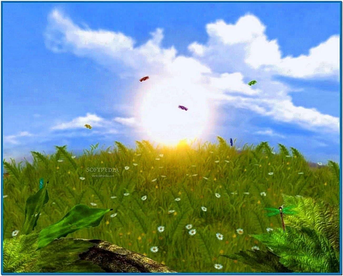 Desktop Screensaver Pictures
