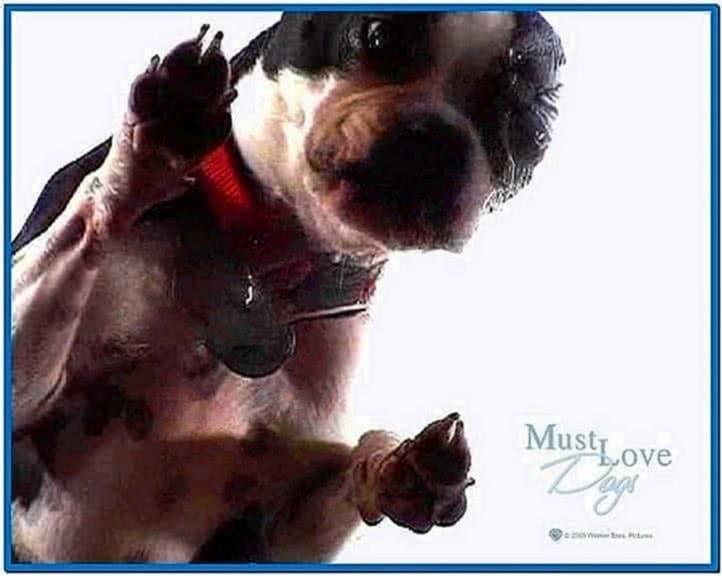 Dog Screen Cleaner Screensaver Mac Download Free