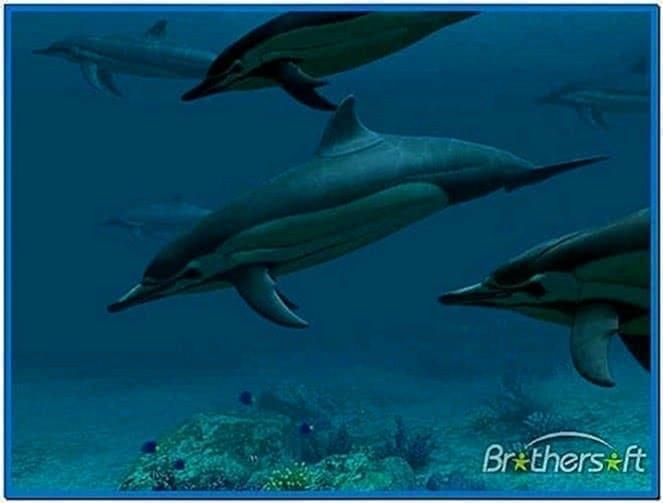 Dolphins 3D Screensaver 3planesoft